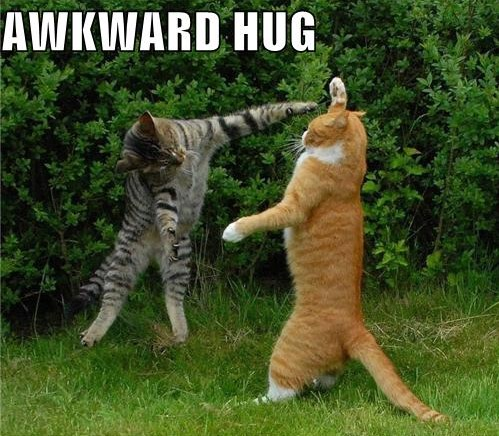 Awkward Friends aka Family……. Don't you just love them….